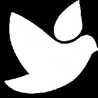 icon-pehart